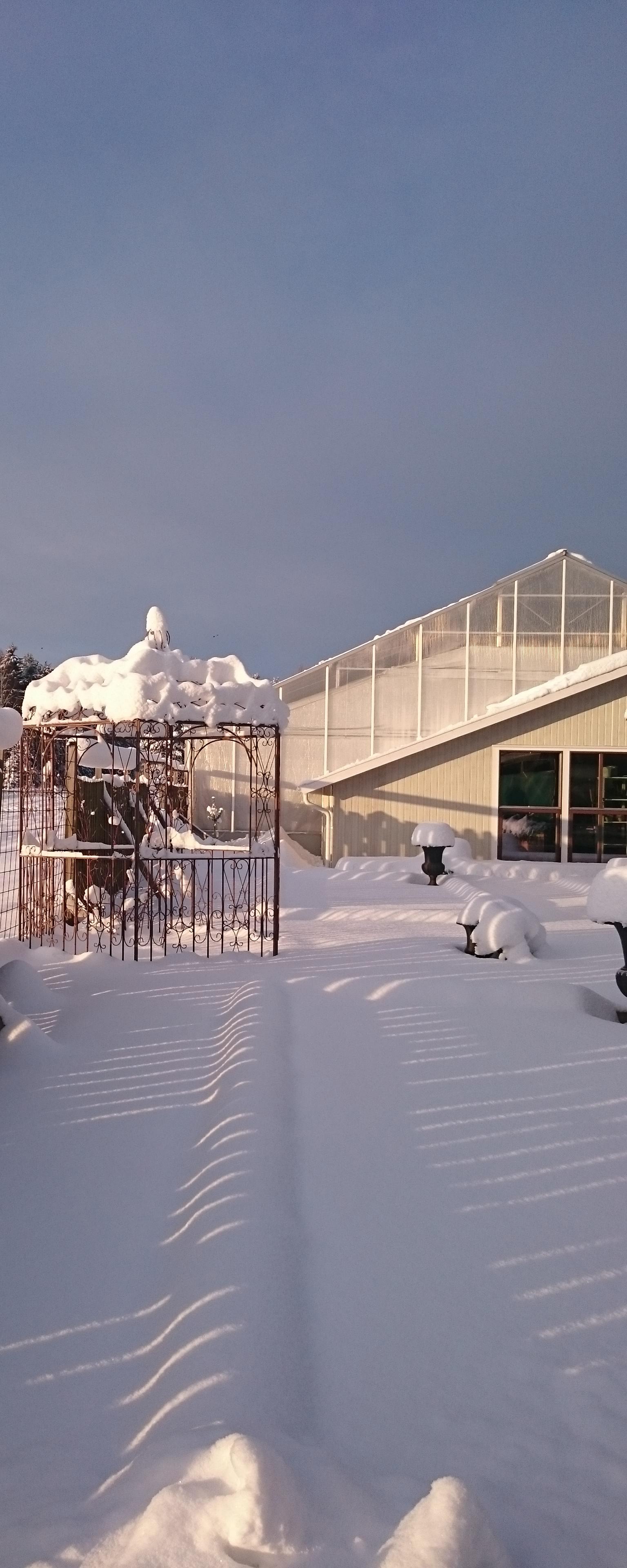 Vinter drivhus redigert_0126